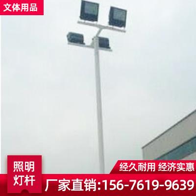 户外篮球场照明灯杆 爬梯球场灯杆 大小管球场灯杆 弧形球场灯杆厂家直销