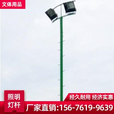 广西南宁爬梯球场灯杆 照明灯杆 大小管球场灯杆厂家
