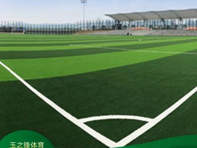 专用人造草足球场 南宁人工草坪足球场厂家 人工草坪足球场价格