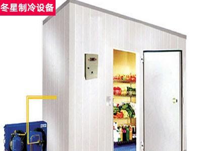 保鲜库 蔬菜水果冷库 冻肉冷库工程 东星冷库厂家