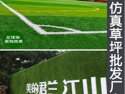 广西省南宁市哪里有卖草坪的市场仿真草坪厂家