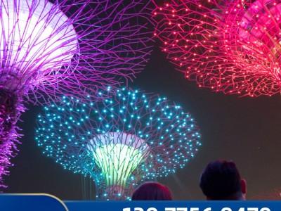 玉林灯光树 夜晚发光的树 霓虹灯标识 灯光树