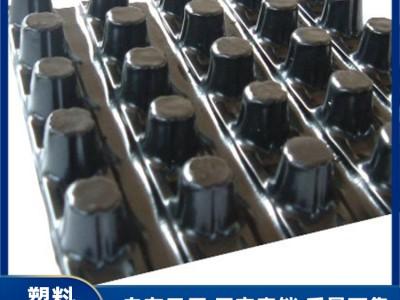 广西排水板生产厂家 塑料排水板批发 排水板设施 规格齐全直销