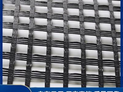广西钢塑格栅厂家 供应钢塑格栅 土工格栅 价格优惠