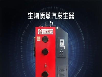 反应釜用 生物质蒸汽锅炉 生物质有机热载体炉定做