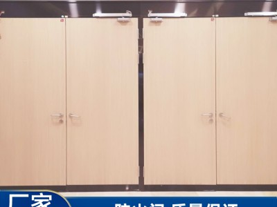 南宁防火门定制 防火门批发 丙级钢木质防火门报价