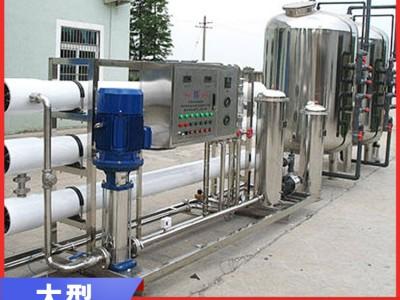 广西食品厂南宁饮料厂豪华净水设备 工业大型饮用水设备厂家直销
