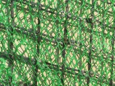 挂三维网喷播植草  挂三维网护坡喷播植草 三维植被边坡网喷播施工
