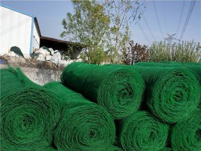 南宁三维网批发  三维植被边坡网喷播施工 能业物资销售