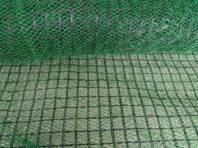 柳州三维植被网厂家  能业物资  挂网喷播植草专用