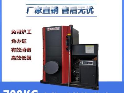 广西南宁 节能环保锅炉 燃生物质蒸汽发生器 印染纺织蒸汽锅炉厂家直销