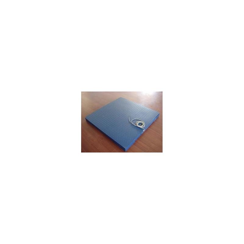 柳州特力衡器 厂家直销 专业定制电子平台称地磅