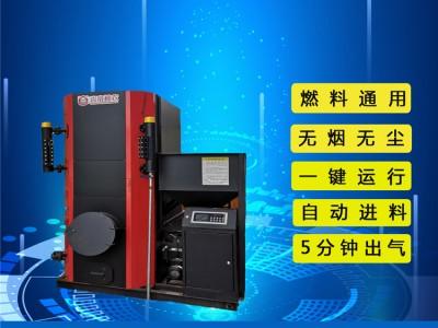 中立源 生物质锅炉品牌 生物质蒸汽锅炉价格