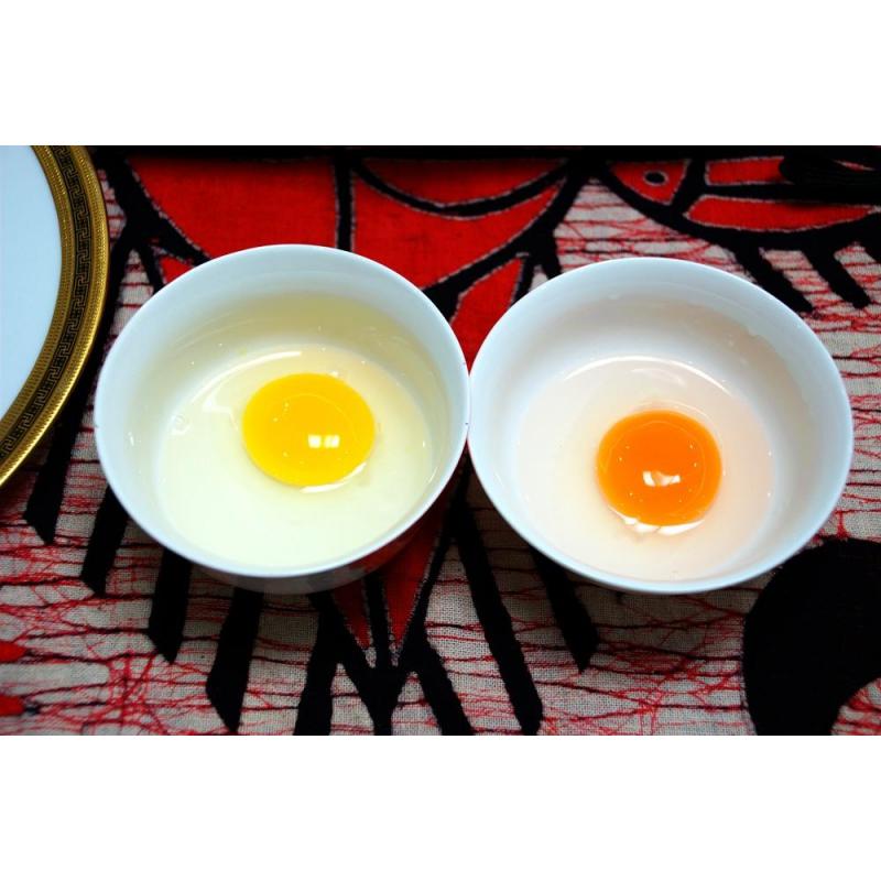 北部湾北海鲜生海鸭蛋大蛋单枚68-72克 海鸭蛋批发厂家