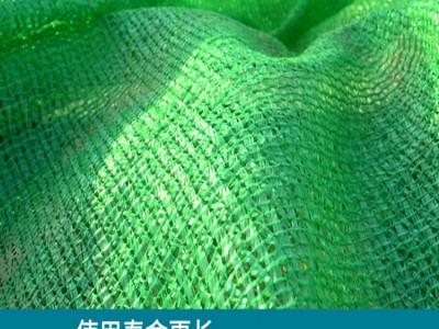 柳州绿化工程盖土网批发厂家 工地防尘盖土网价格