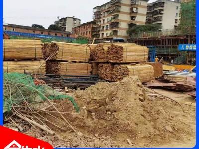 金生水大木业 建筑木方价格 求购木方
