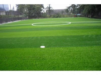 仿真地毯草坪围挡绿化市政工程装饰人造草坪草皮足球场