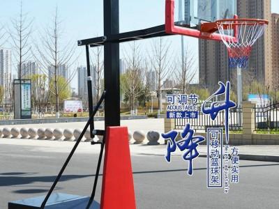 篮球架户外家用成人可升降篮球架青少年比赛训练篮球架