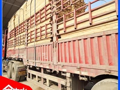 广西建筑木方批发 厂家直销 成本降低30%