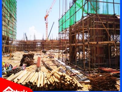 杉木建筑木方价格 小体积 大能量 更好更快建设施工 金生水厂家直销