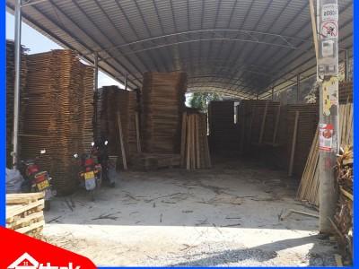 广西建筑木方厂家 厂家直销 0差价 耐用更省钱 金生水实力厂家