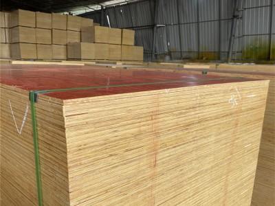 松木建筑模板 整芯板 幅面大 拼缝少  使用次数多