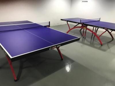乒乓球桌室内室外  台球案子标准乒乓球台可直供加工定制