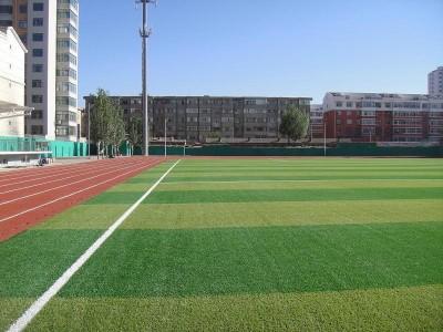 仿真草坪户外人造草坪地毯室内装饰阳台绿植幼儿园人工草皮假草皮