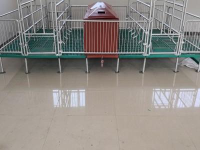 广西陆川母猪产床 定制全复合产保两用母猪产床