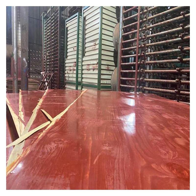 天津建筑模板木板 红板定制批发报价 全国发货