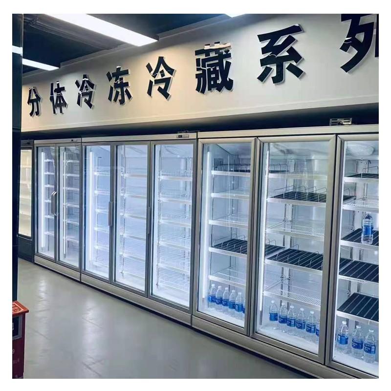 广西南宁立体冷冻柜供应 节能环保 可定制包安装 速冻柜冷冻柜批发